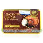 Lingzhi Plus Shiitake หลินจือ พลัส ชิตาเกะ บรรจุ 60 แคปซูล (ขนาดใหญ่)ส่งฟรี Ems