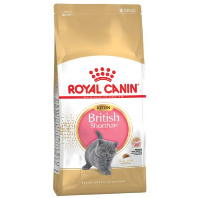 Royal Canin Cat Kitten British Shorthair