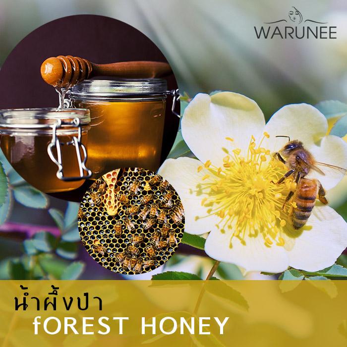 น้ำผึ้งป่า