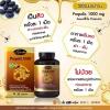 Auswelllife Propolis 1000 mg 60 Capsules Made in Australia