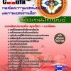 แนวข้อสอบ นักวิเทศสัมพันธ์ กรมพัฒนาการแพทย์แผนไทยและการแพทย์ทางเลือก