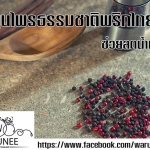สมุนไพรธรรมชาติพริกไทยดำ (Black Pepper) ช่วยลดน้ำหนัก และ รักษาคนติดบุหรี่