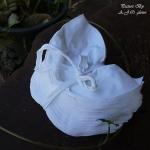 เศษผ้าขาวปึก ขนาดฝ่ามือ เนื้อรวม