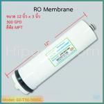 ไส้กรอง RO Membrane 300 GPD ยี่ห้อ MPT ชิ้น/ลัง