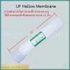 ไส้กรอง UF Hallow Membrane 10 นิ้ว ชิ้น/ลัง