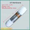 ไส้กรอง UF Membrane 11-12 นิ้ว (I Type) ชิ้น/ลัง