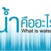 น้ำ คือชีวิต