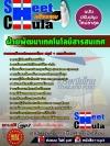 แนวข้อสอบ ฝ่ายพัฒนาเทคโนโลยีสารสนเทศ บริษัทไปรษณีย์ไทย จำกัด