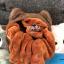 น้องแมว หมอนผ้าห่ม 3 ฟุต 10 ตัว thumbnail 8